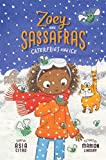 Caterflies and Ice (Zoey and Sassafras Book 4) (English Edition)